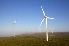 阿尔巴尼风力场 库存图片