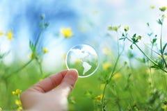 在花的玻璃地球 库存照片