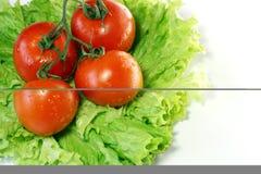 留下沙拉蕃茄 免版税图库摄影