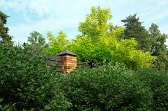 有砖的篱芭在绿色本杰明榕属树和杉木附近 免版税库存照片