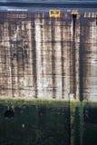在巴拿马运河米拉弗洛雷斯的抽象标志 库存图片