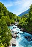 与纯净的河小河的生动的瑞士风景 免版税图库摄影