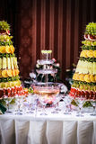 Πηγή του κρασιού σε μια δεξίωση γάμου πολυτέλειας Στοκ Φωτογραφία