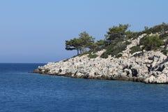 有杉树的小地中海海岛 免版税图库摄影