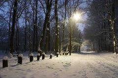 夜间冬天 库存图片