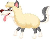 在绵羊衣物的动画片狼 免版税库存图片