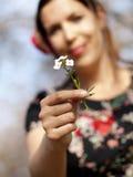 美丽的女孩在春天的移交一棵酢酱草 库存照片