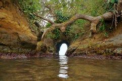 在岩石的洞在海岸 免版税库存照片