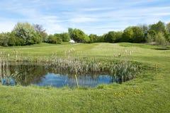 高尔夫球航路 免版税库存图片