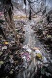 垃圾/污染中国 库存照片