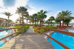 在热带游泳池的日出 免版税库存照片