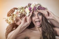 两美丽的春天神仙,滑稽,友谊标志 免版税库存图片