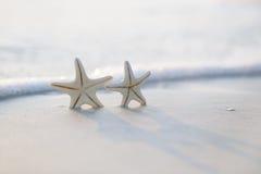 在海海洋的两个海星在佛罗里达,软的柔和的日出靠岸 免版税库存照片