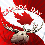 加拿大日卡片 库存图片