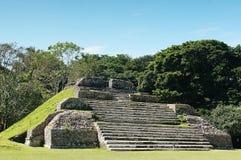 Майяские руины Белиз, Мексика Стоковая Фотография