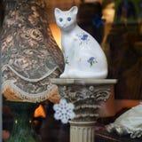 伦敦 猫 免版税库存照片