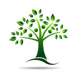 人树商标。家谱的概念,自然 免版税库存图片