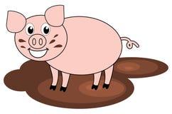 在泥的一头猪 免版税库存照片