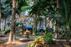 森林阵营客舱和房子 免版税库存图片