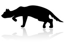 猫剪影 免版税库存照片