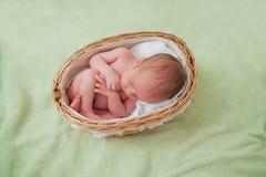 白种人新出生的婴孩 免版税图库摄影