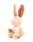 可爱的普通被充塞的兔宝宝 免版税库存图片