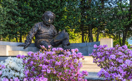 爱因斯坦纪念品美国国家科学院 免版税库存照片