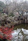 中国庭院池塘 免版税图库摄影