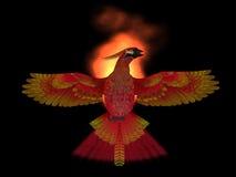 Огонь птицы Феникса Стоковое Изображение RF