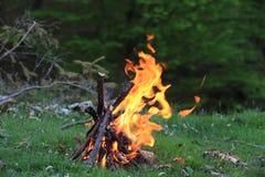 горячее пламя лагерного костера Стоковая Фотография RF