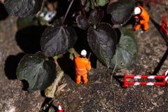Μικροσκοπικοί πρότυποι εργαζόμενοι Α ζιζανίων Στοκ Εικόνες