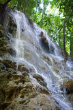 牙买加 小瀑布在密林 免版税库存图片