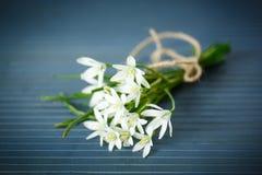 Όμορφη ανθοδέσμη των άσπρων λουλουδιών Στοκ εικόνα με δικαίωμα ελεύθερης χρήσης