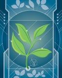 科学和自然 免版税库存图片