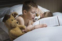 男孩读书催眠故事 库存照片