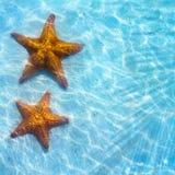 抽象蓝色与海星的海热带背景在沙子 免版税库存图片