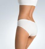 Женское тело Стоковое Изображение RF