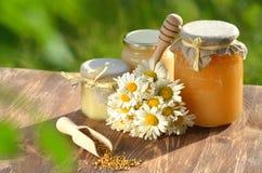 充分瓶子可口蜂蜜和蜂花粉 免版税库存照片