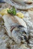在盐烘烤的海鲷 库存图片