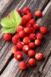 时段丛生通配的草莓 库存照片