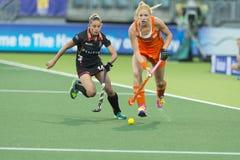世界杯曲棍球:荷兰对比利时 库存图片