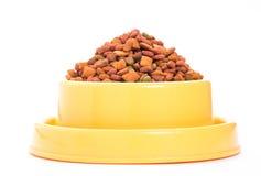 干燥食物猫 免版税库存图片