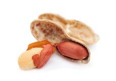 изолированный арахис Стоковая Фотография RF