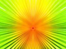 颜色和噪声摘要后面地面运动迷离从棕榈迅速移动 免版税库存图片