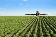 拖拉机喷洒的大豆庄稼领域 免版税库存照片