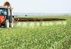 红色拖拉机喷洒的大豆领域的农夫 免版税库存照片