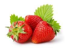 与在白色隔绝的叶子的成熟草莓 免版税库存照片