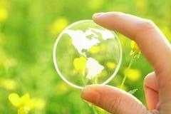在花的玻璃地球 库存图片