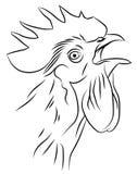 一只打鸣的雄鸡的剪影 库存图片