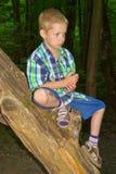坐由树的男孩 免版税库存照片
